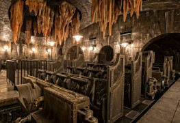 Universal Studios Harry Potter Escape from Gringotts ride